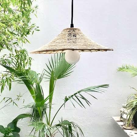 plantas de interior para decoración