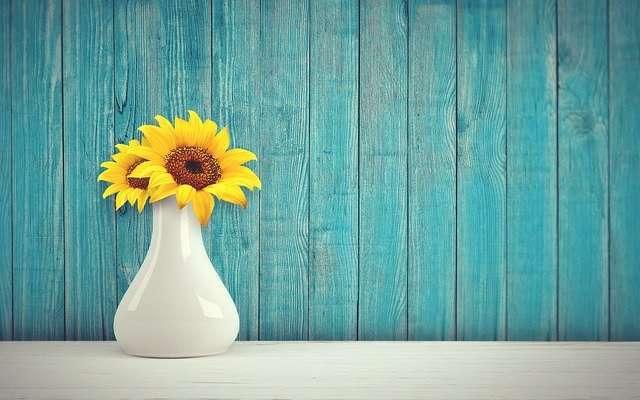 flores verbena