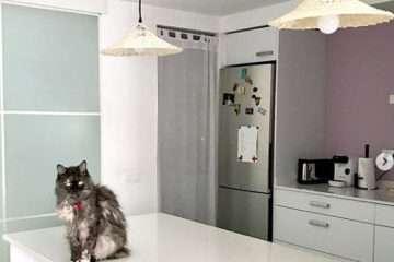 consejos decorar cocina