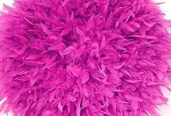`plumas en la decoracion